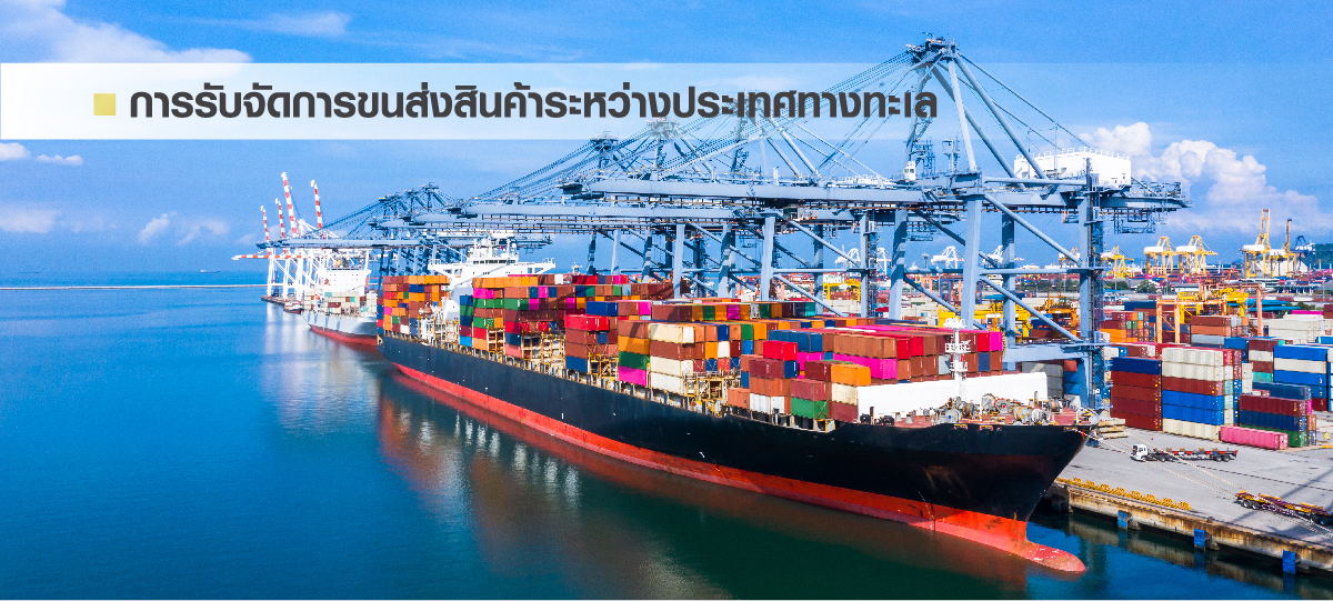 sea freight th
